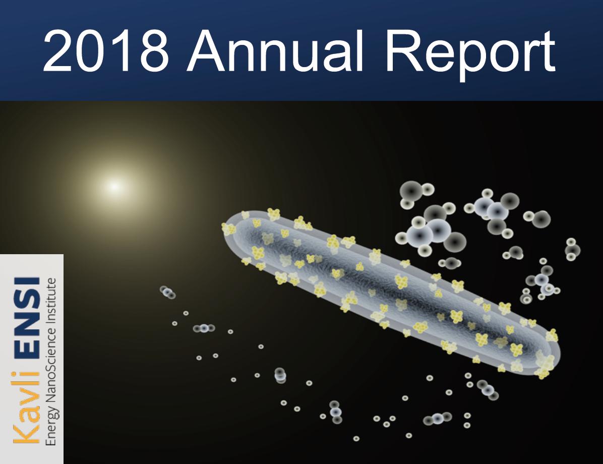 Kavli Ensi 2018 Annual Report